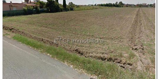 Fiumicino terreni agricoli  confinanti mq. 10.000 totali