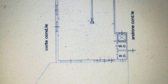 Fiumicino isola sacra locale C/1 mq.100 doppia vetrina con spazio esterno